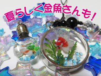 8金魚レジ.jpg